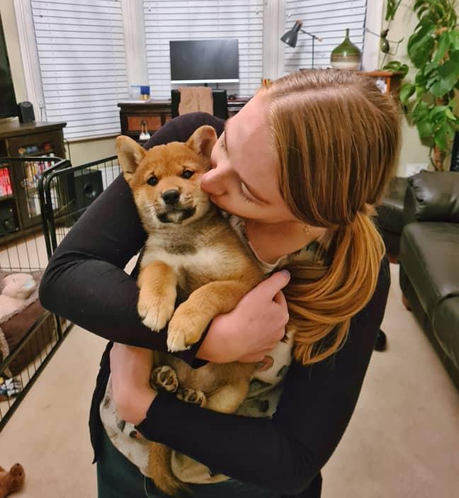 Anna and Watson at home (Credit: @shiba_watson)
