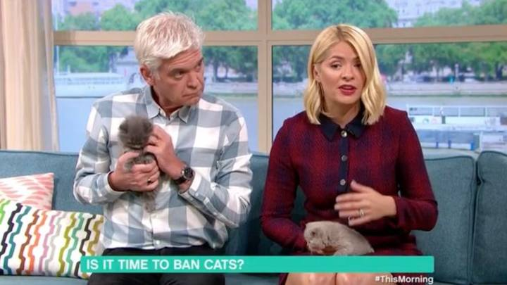 Holly Willoughby Horrified By Guest Calling For UK Cat Ban