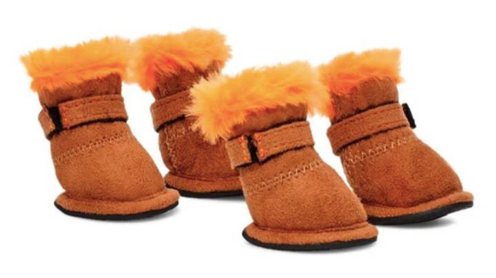 Dog Owners Are Raving About £60 Pet Ugg Boots Complete With Faux Fur