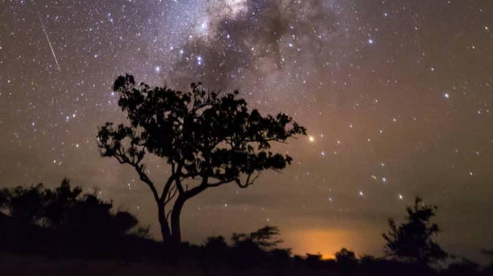 The Eta Aquarid Meteor Shower Peaks Tonight