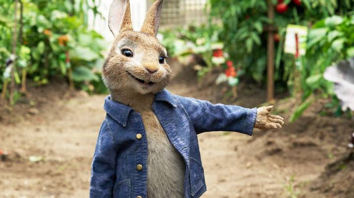 Hunter Is Releasing An Adorable Peter Rabbit Collection