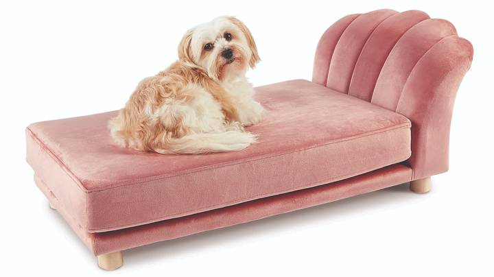 Aldi Launches Luxury Scalloped Pet Beds