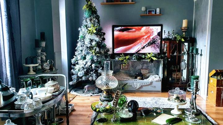 Harry Potter Fan Gives Home Slytherin Makeover For Christmas For Just £70