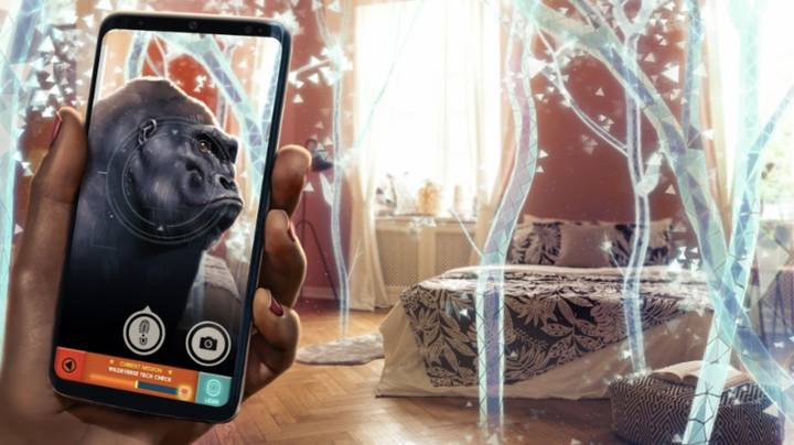 Chester Zoo Has Launched Its Own Gaming App