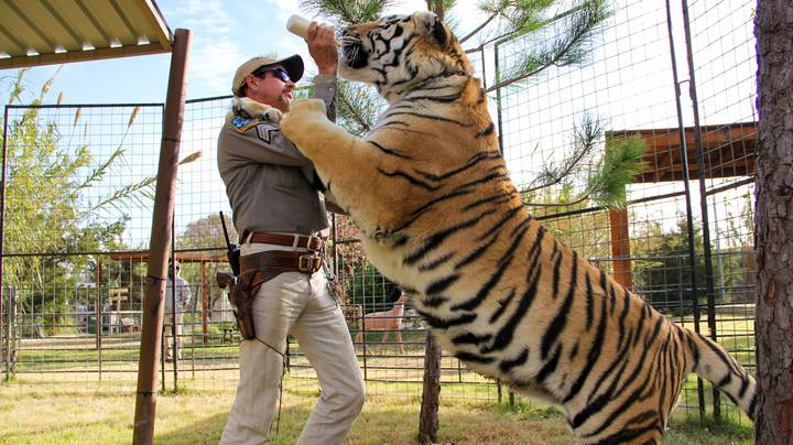 People Are Seriously Divided Over The 'Tiger King' Reunion