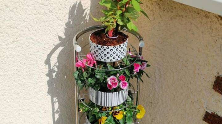Woman Creates Gorgeous Plant Stand Made Entirely From Cake Tins