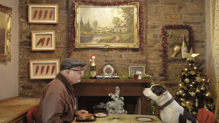 Viewers In Tears Over Alternative John Lewis Christmas Ad About Man And His Dog