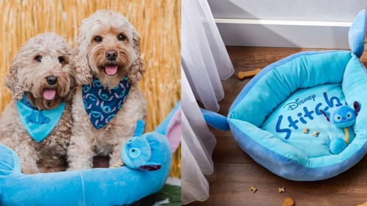Primark Is Selling An Adorable Stitch Pets Collection - And We're Obsessed