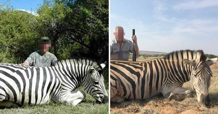British Trophy Hunters Pose with Vulnerable Zebras They've Killed For Fun