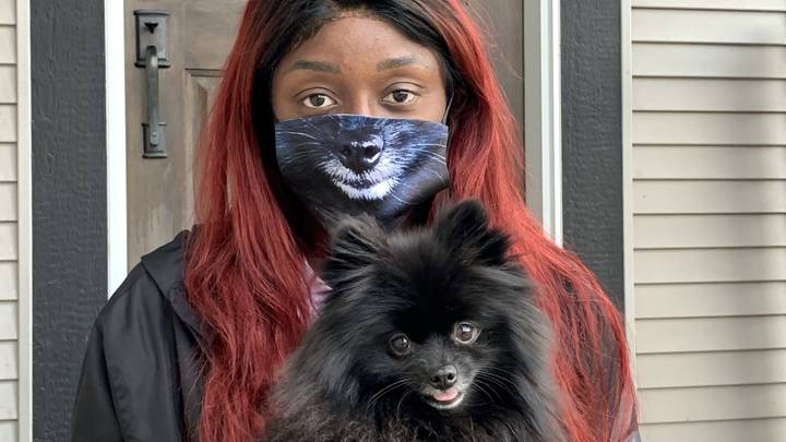 You Can Now Get Face Masks Of Your Pet's Mouth
