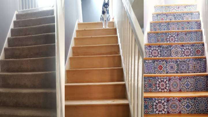 Woman Reveals Stunning DIY Stairs Transformation After Puppy Destroys Carpet