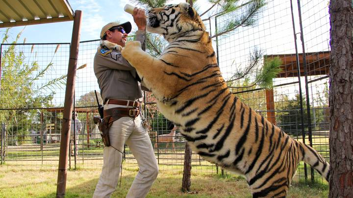 Netflix Confirms Release Date For New 'Tiger King' Instalment