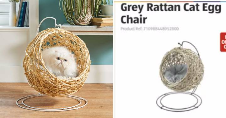 People Are Flogging Aldi's Sold-Out Cat Chair On eBay