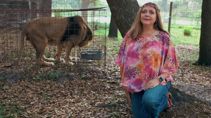 Carole Baskin Has Been Awarded Control Of Joe Exotic's Zoo