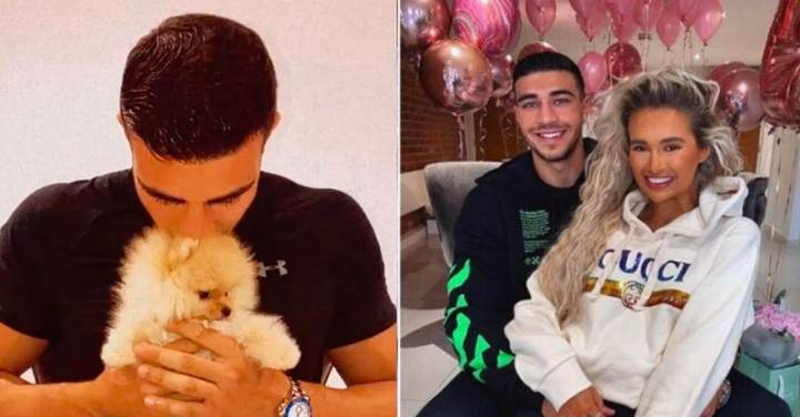 Molly-Mae Hague And Tommy Fury Anger Fans After Shipping New Puppy From Russia