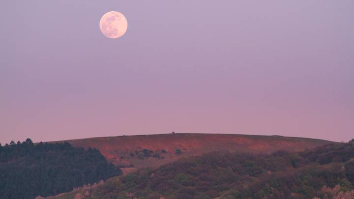 A 'Pink Supermoon' Will Be Visible In The UK Next Week