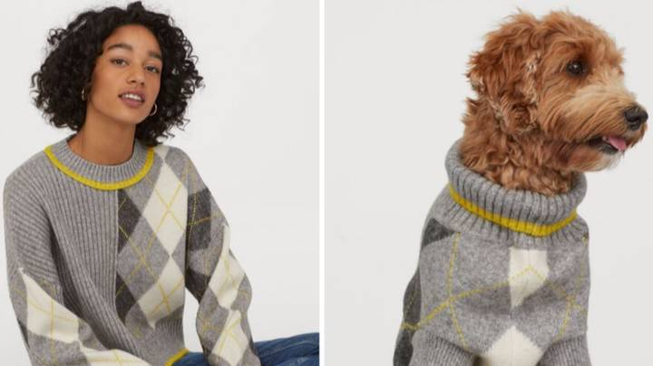 H&M and Pringle of Scotland Are Selling Matching Dog And Owner Jumpers