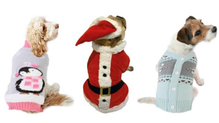 B&M Launches Adorable Dog Christmas Range