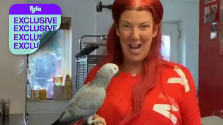 Chanel The African Grey Parrot Is Living Her Best Life After Being Reunited With Her Owner
