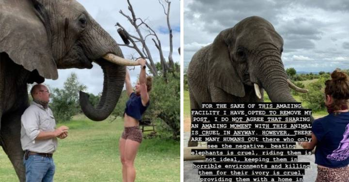 Outrage As Woman Does Pull-Ups On Elephant's Tusks
