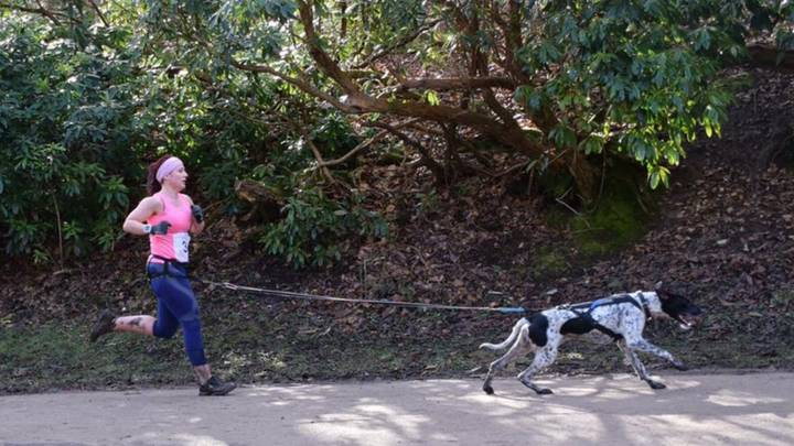 Canicross: Here's Why Running With Six Legs Is Better Than Two