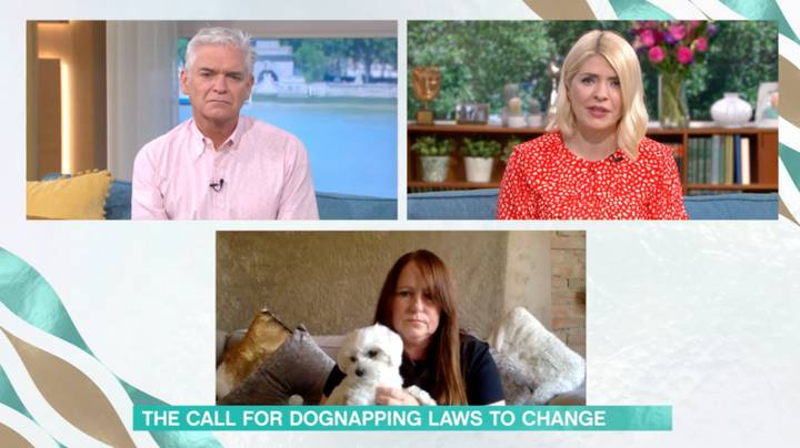 This Morning Guest Says Dognapping Should Be Treated As Seriously As Kidnapping By Law