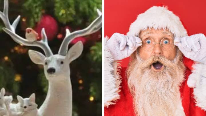 B&M Shoppers Left Stunned By NSFW Reindeer Ornament
