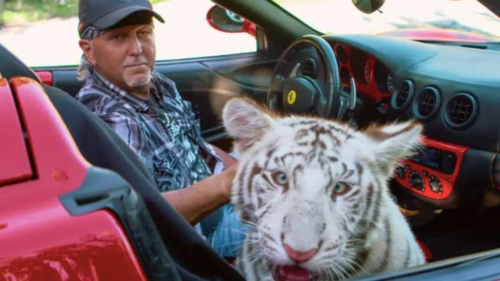 Tiger King's Jeff Lowe Has All Remaining Tigers Confiscated From His Park