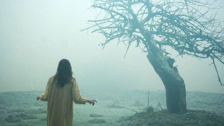 These Are The Real Life Stories That Inspired Cult Horror Films
