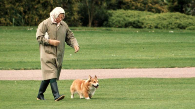 The Queen Left Heartbroken As Her Beloved Dog Passes Away