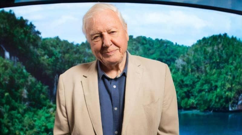 David Attenborough Is Teaching Kids Geography