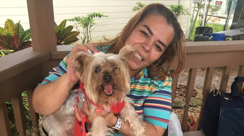 Heartwarming Moment A Lost Dog Is Renuited With Her Owner After Three Years Missing