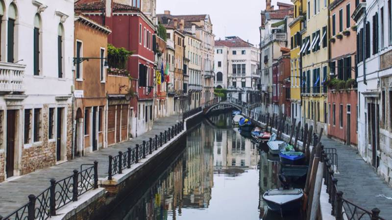 Jellyfish Spotted In Venice's Crystal Clear Canals