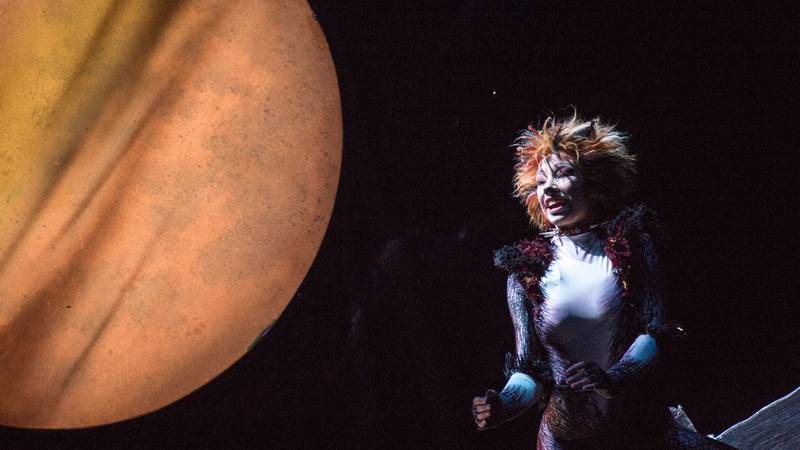 Andrew Lloyd Webber's 'Cats' Is Free To Stream Online This Weekend