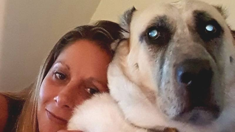 Woman Issues Urgent Warning After Her Dog Suffers A Stroke