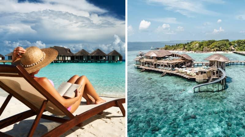 Luxurious Maldives Resort Is Hiring A Bookworm To Run Its Beachside Bookshop