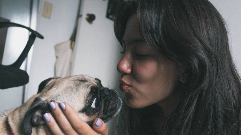 One In Eight Dog Owners Kiss Their Pet On The Lips
