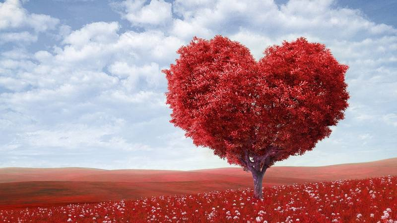 ​Valentine's Day Trees Are Perfect For Those Who Still Don't Want To Let Go Of Christmas​