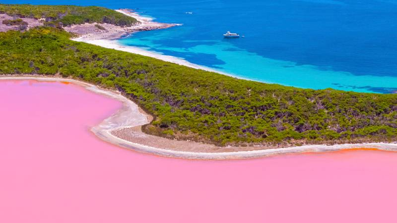 There's A Millennial Pink Lake In Australia And It Needs To Be On Your Bucket List