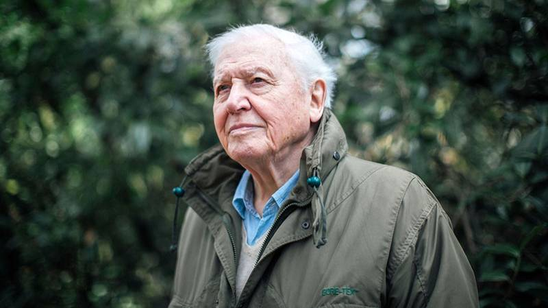 Sir David Attenborough To Present New BBC Nature Series 'A Perfect Planet'