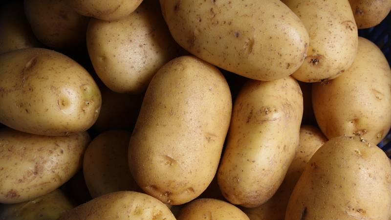 Boss Turns Herself Into A Potato During Group Conference Call
