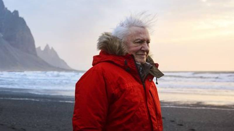 A Film Is Coming All About The Legend That Is David Attenborough