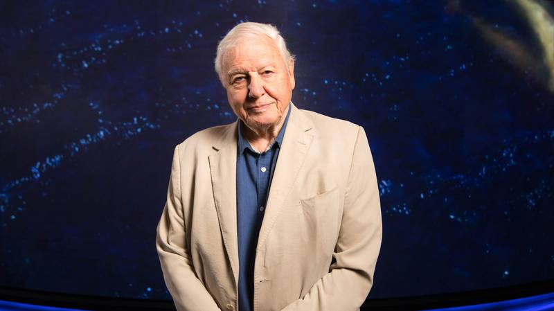 BBC Bags David Attenborough And Danny Dyer For New Coronavirus Homeschooling Videos