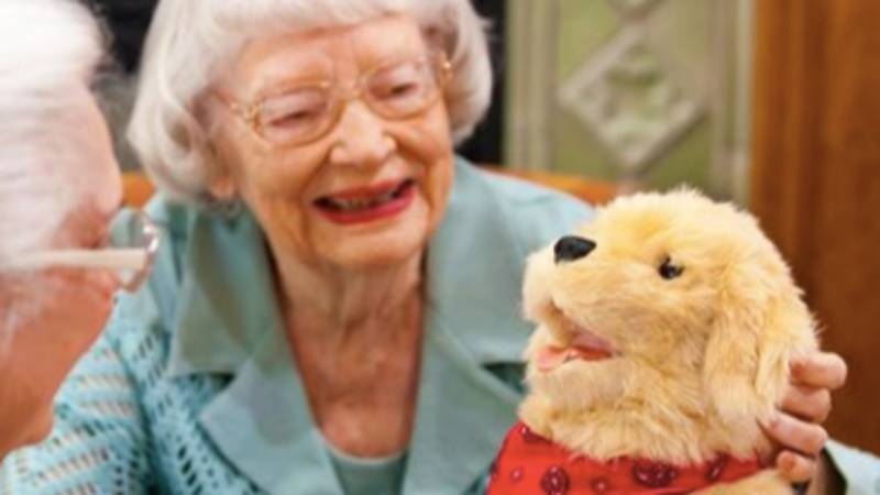 Care Homes Introduce Ageless Innovation Robotic Dogs To Keep Elderly People Company