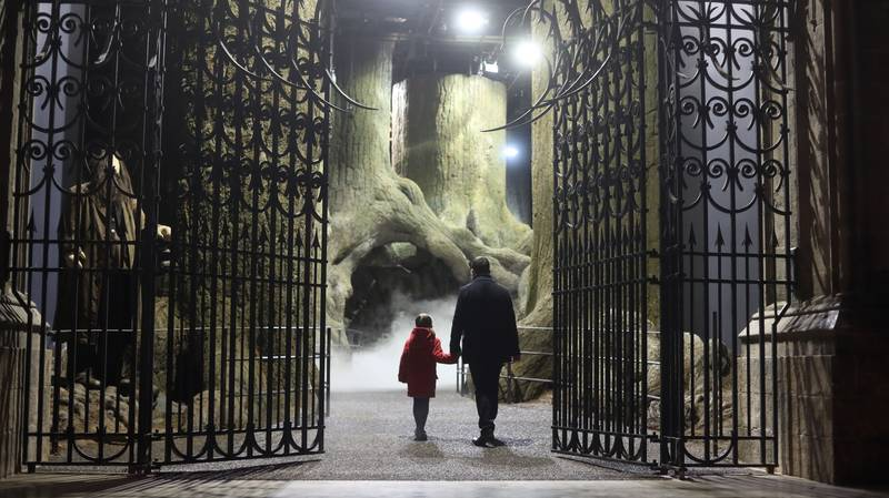 A New 'Harry Potter' Theme Park Is Coming To Tokyo In 2023