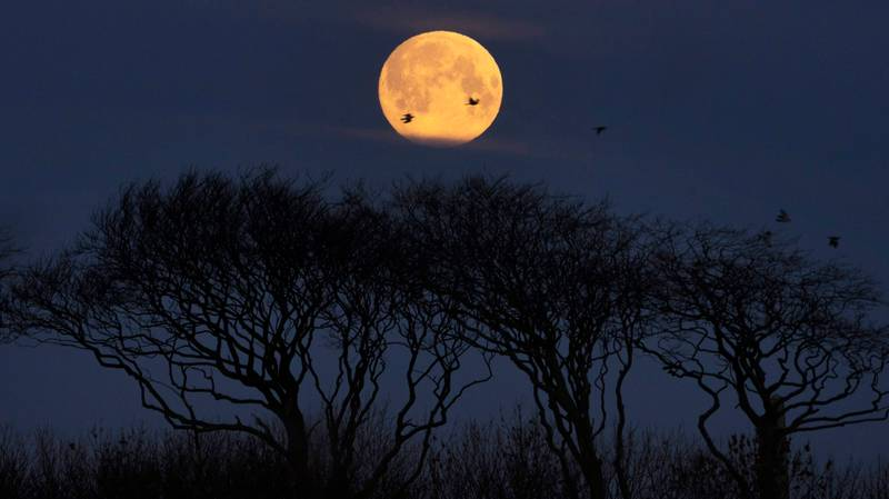 A Hunger Moon Is Coming This Weekend - Here's What It Means For You