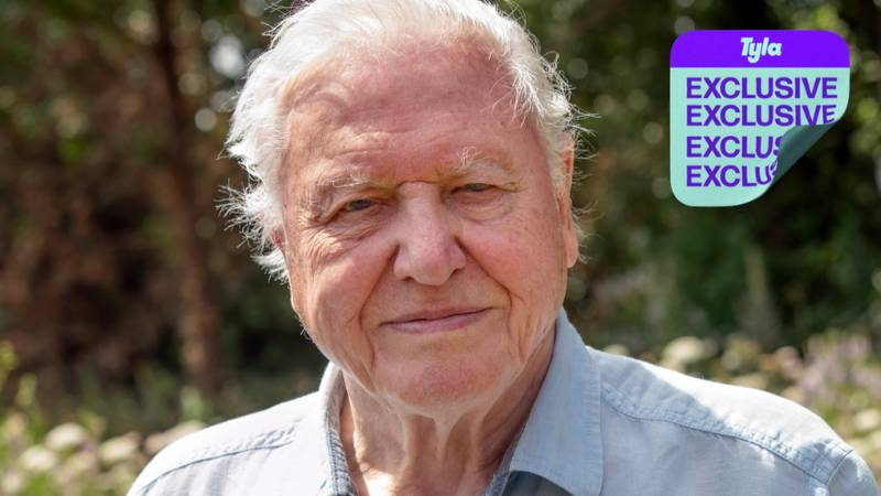 Sir David Attenborough Defends The Ethics Of Zoos And Aquariums: 'They're Justified'