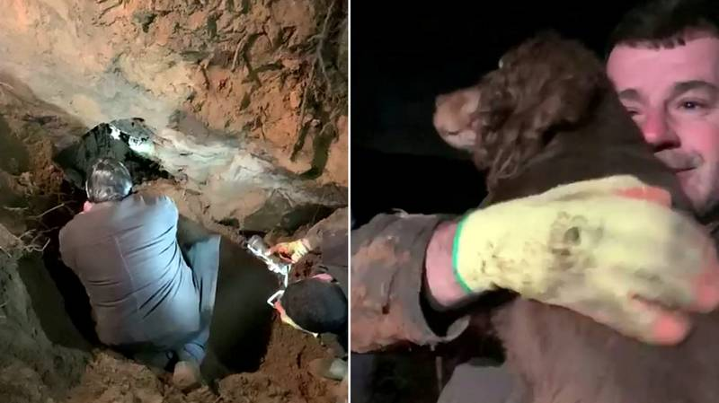 Incredible Moment Deaf Dog Trapped For 30hrs In Rabbit Hole Is Rescued