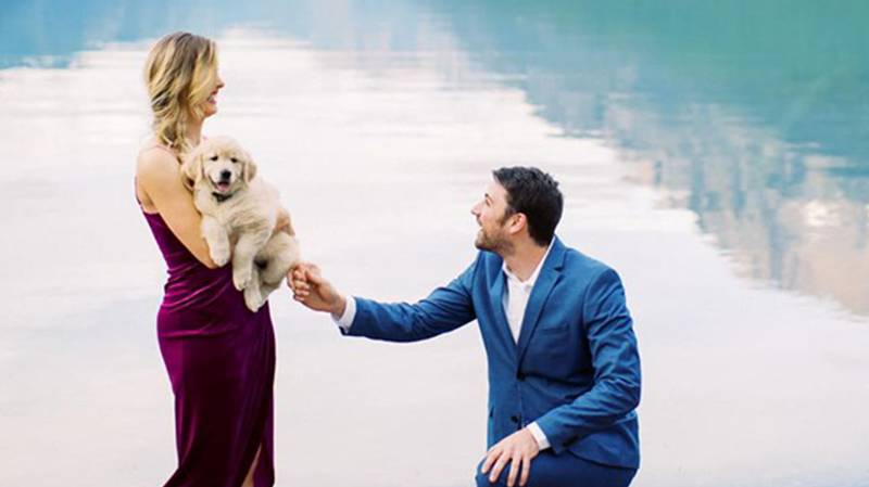 Man Proposes To His Girlfriend With Golden Retriever Puppy