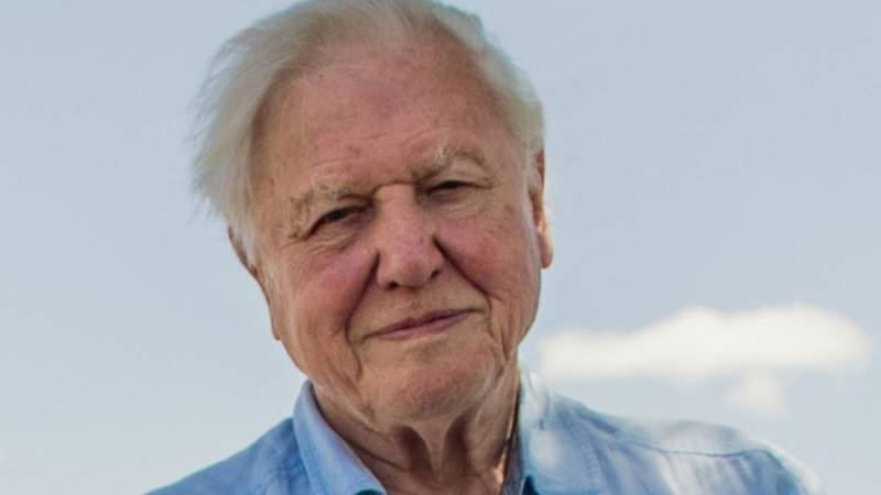 PSA: Sir David Attenborough Has Officially Joined Instagram